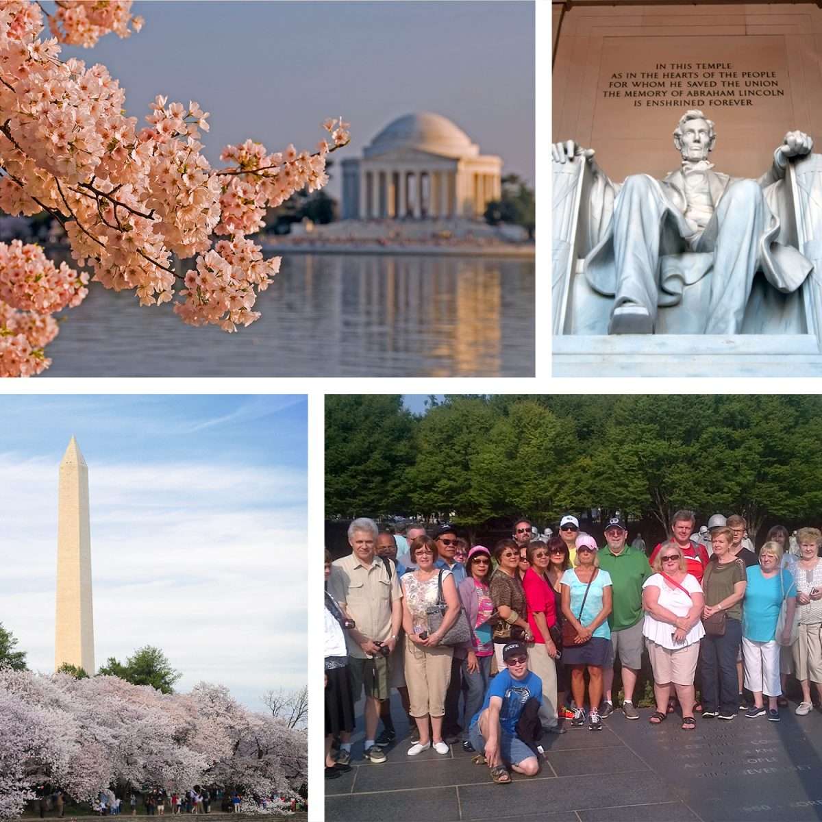 Washington cherry blossom photo collage